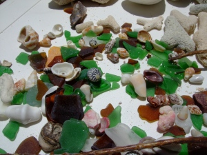 Treasures from the shore